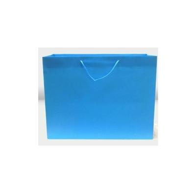 Boutique -20 x 7 x 16 - Pack 50-Island Blue
