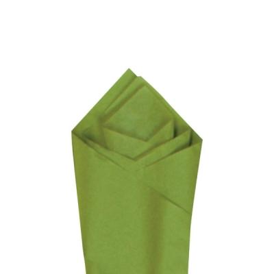 """Aloe 20"""" x 30"""" Color Tissue"""