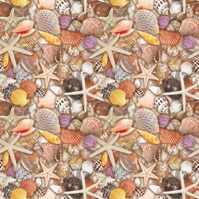 Seashells Gift Wrap 30 x 833