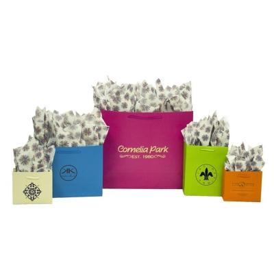 Boutique Color Paper Shopping Bags