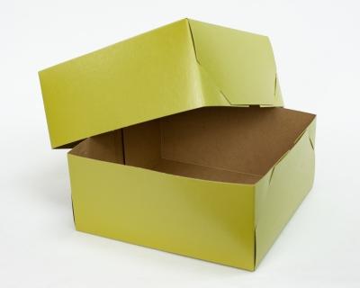 Shimmer Avocado 2pc Gift Box 12x12x5