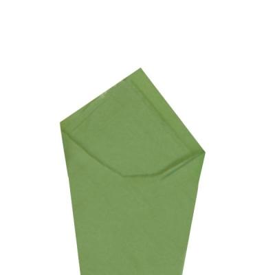 "Green Tea 20"" x 30"" Color Tissue"
