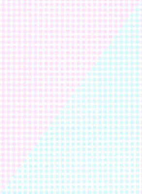 """Pink and Blue Gingham Gift Wrap 24"""" x 833'"""