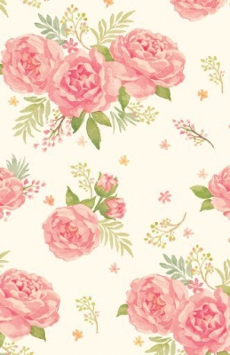 """Gypsy Rose 24"""" x 417'"""