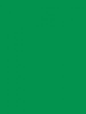 """Green Matte Gift Wrap 30"""" x 417'"""