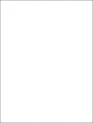 """White Matte Gift Wrap 30"""" x 417'"""
